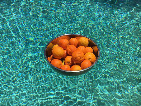 Orange, Swimming Pool, Metal Bowl, Water