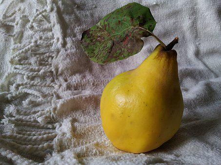 Quince, Still Life, Food, Pear-quince, Autumn, Fruit