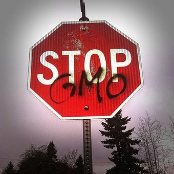 Gmo, Science, Stop, Food, Health, Wellness, Well, Sign