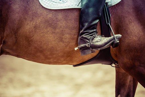 Reiter, Horse, Show Jumping, Tournament, Equestrian