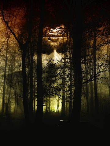 Forest, Face, Fog, Horror, Disgust, Gray, Dismay