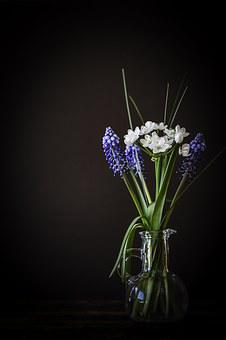 Flowers, Flower Vase, Vase, Glass, Grape-hyacinth, Blue