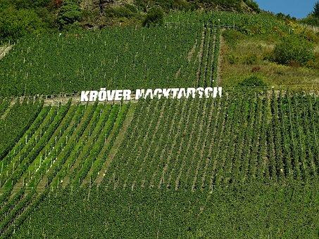 Vineyard, Mosel, Winegrowing, Steep Slope, Slate