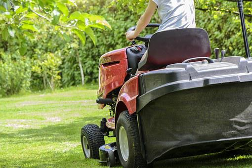 Mowing The Grass, Garden Work, Lawn, Garden, Care