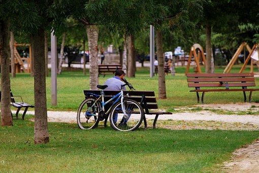 Solitude, Bench, Man, Bicycle, Garden, Park, Trees