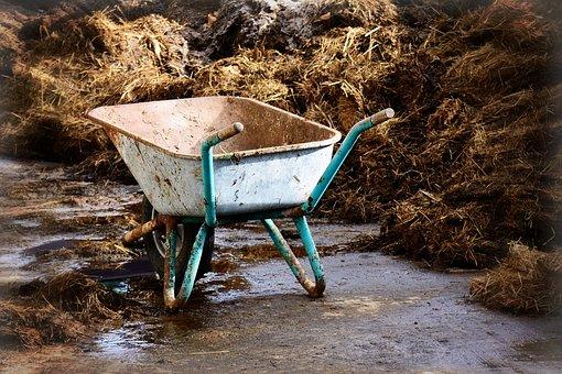Work, Transport, Pushing Barrow, Wheelbarrow, Cart