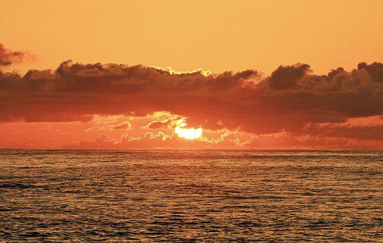Hawaii, Sunrise, Beach, Ocean, Hawaii Beach, Sea, Oahu