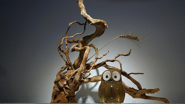 Device, Owl, Deadwood, Decoration