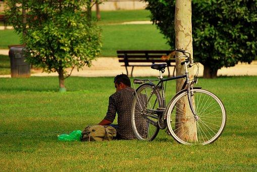 Solitude, Vagabond, Bicycle, Park, Garden, Tree, Man