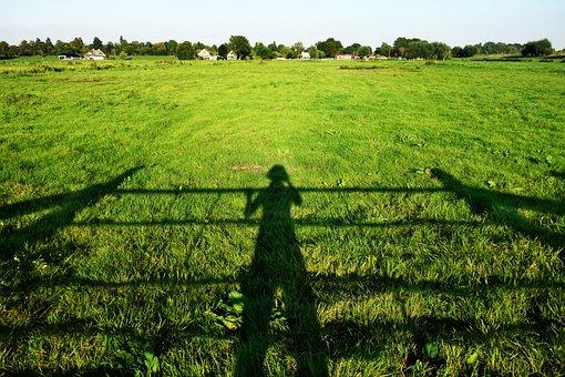 Shadow, Person, Sunlight, Field, Landscape, Skyline