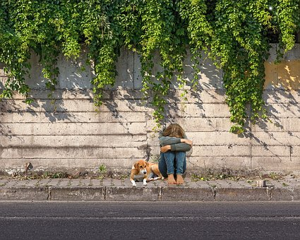 Child, Sad, Solitude, Animal, Wall, Animals, Green
