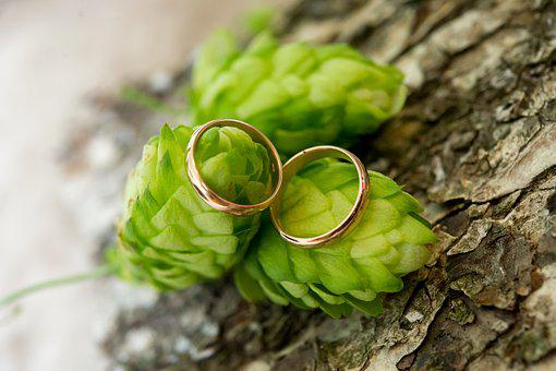 Rings, Wedding, Engagement, Couple, Hops, Family