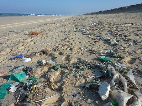 Guise, Waste, Line Costs, Coast, Beach, Trash