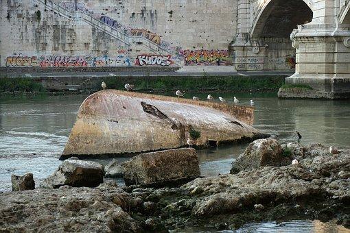 Rome, Wreck, Tiber, River, Italy, Bridge, Gulls, Dirty