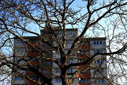 Home, Residence, Skyscraper, Tree, Kahl, Aesthetic