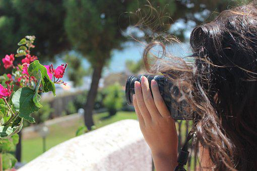 Photographer, Photo, Camera, Click, Shot