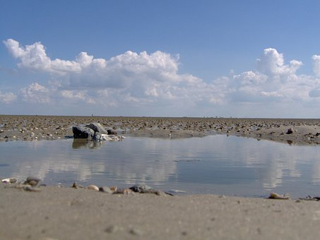 Ebb, Wadden Sea, Watt Bottom, Sea, National Park