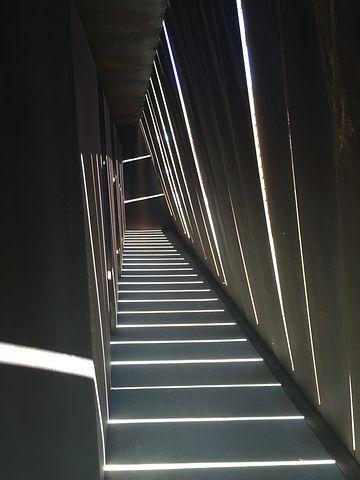 Light, Vineyards, Hall, Architecture, Blind