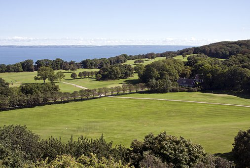 Wall, Stone, Forest, Hills, Golf, Course, Grass, Turf