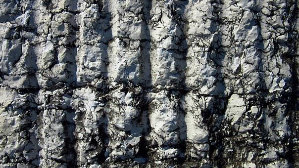 Coquina, Marble, Stone, Surface, Rauh, Layer, Texture