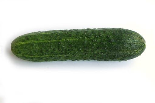 Cucumber, Green, Vegetable, Long, Fresh, Vitamin