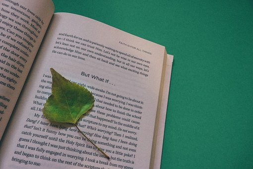 Book, Open Book, Leaf, Mind, Renew, Black And White