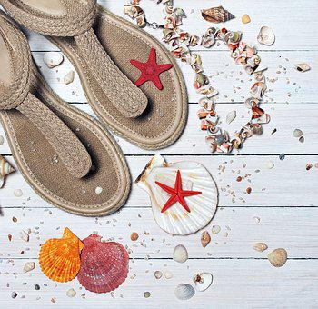 Sandals, Seashells, Sea, Vacation, Sand, Beach, Summer