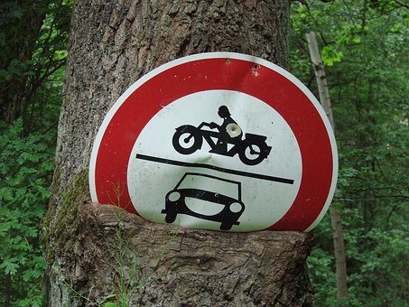 Traffic, Nature, Ingrowing, Overgrown, Locked