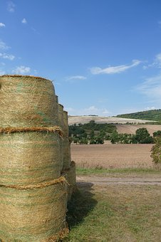 Straw Bales, Field, Summer, Nature, Arable, Cereals