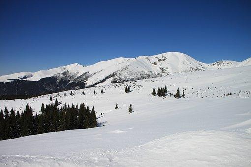 Gorj, Mountains, Parang, Ranca, Romania, Snow, White