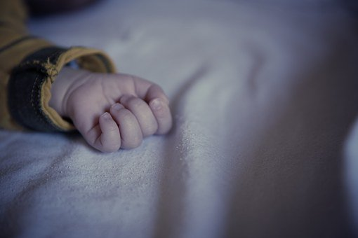 Small Child, Baby, Hand, Infant, Sleeping, Child, Sweet