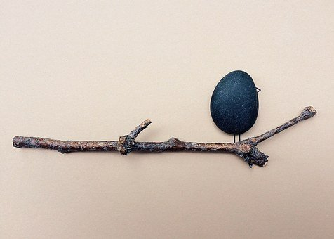 Out On A Limb, Limb, Branch, Bird, Rock, Art