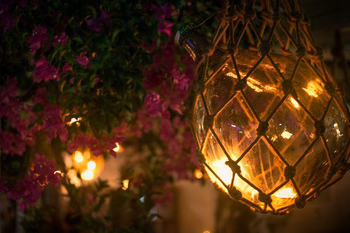 Light, Glow, Flowers, Night, Glass, Design, Net, Pink