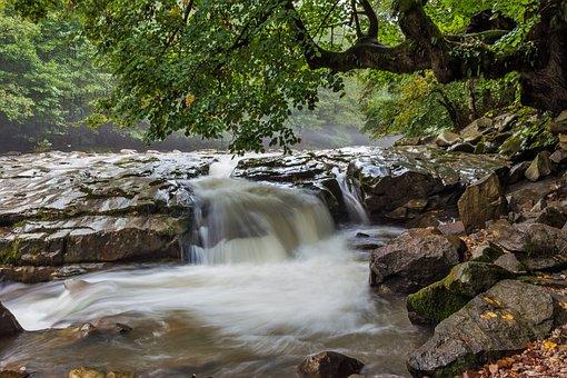 Stream, Rapids, Rumania, Transylvania, Bihar Mountains