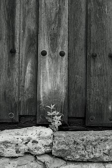 Door, Plant, Stone, Wood, House, Entrance, Outdoor