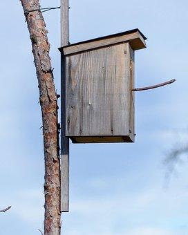 Aviary, Nesting Place, Bird Feeder, Bird