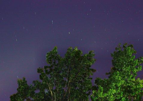 Star, Sky, Tree, Night, Space, Moon, Night Sky Stars