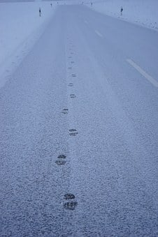 Traces, Snow, Road, Away, Entlange The Way, Footprints