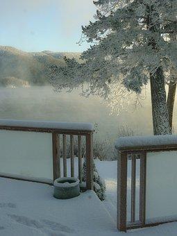 Winter, Season, Frosty, Trees, Nature, Canim Lake