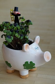 New Year's Eve, New Year's Day, Lucky Charm, Pig