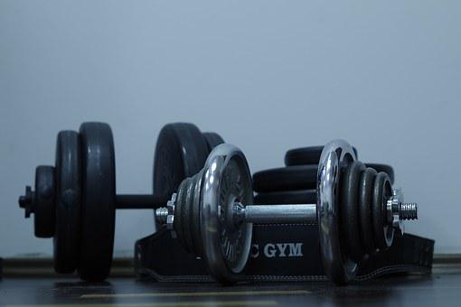 Sport, Exercise, Gym, Dumbbell, Health, Slimming