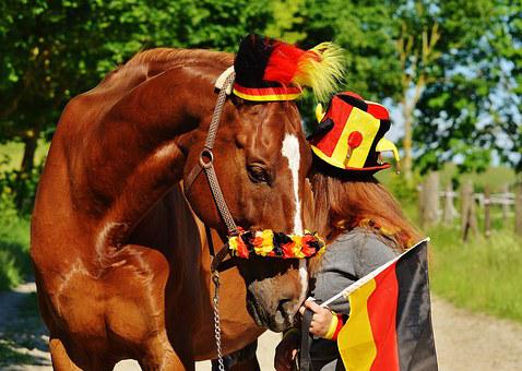 European Championship, Football, 2016, Germany, Horse