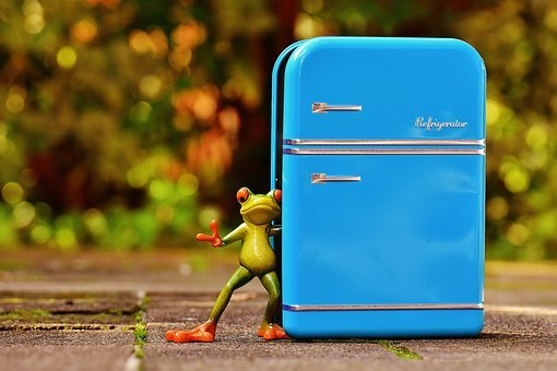 Frog, Refrigerator, Blue, Fig, Funny, Fun, Frogs, Cute