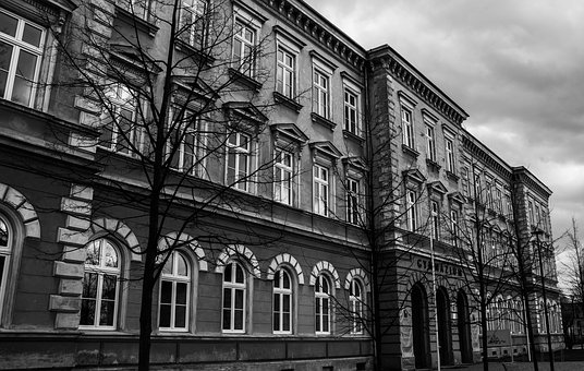 School, Black And White, Trees, Autumn, Building