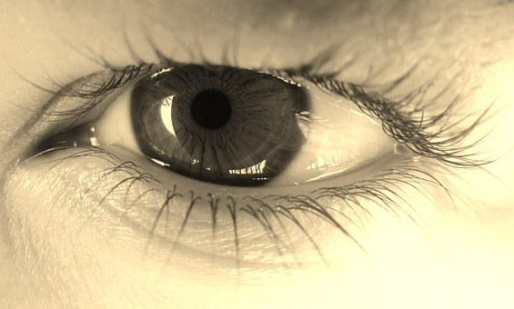 Eye, Algae, Eyes, View, Girl, Young, Black And White