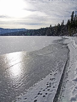 Winter, Scenery, Trees, Cold, Snow, Landscape, Frozen