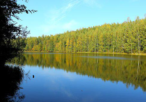 Lake, Forest, Waldsee, Nature, Landscape, Water, Trees