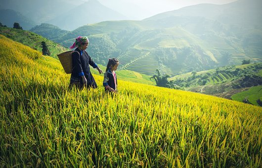 Agriculture, Asia, Back, Black, Cambodia, Victory, Kids