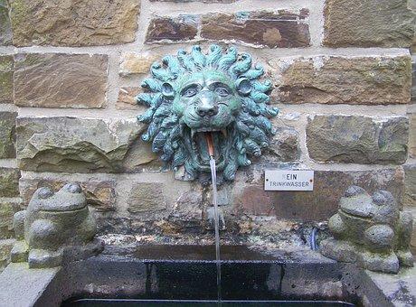 Fountain, Pool, Lion, Lion Head, Basin, Water