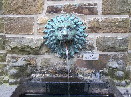 Fountain, Pool, Lion, Lion Head, Basin, Water